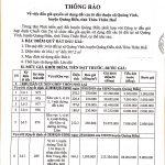 Thông báo đấu giá quyền sử dụng đất thuộc xã Quảng Vinh huyện Quảng Điền