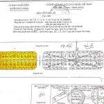 Thông báo đấu giá quyền sử dụng đất 22 lô đất tại khu dân cư TDP Tân Mỹ, thị trấn Thuận An, huyện Phú Vang, tỉnh Thừa Thiên Huế