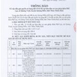 Thông báo đấu giá quyền sử dụng đất 15 lô đất tại khu dân cư xen ghép thôn Phổ Lại, xã Quảng Vinh, huyện Quảng Điền, tỉnh Thừa Thiên Huế.